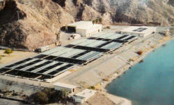 Willow-Beach-National-Fish-Hatchery_within-Lake_Mead_National_Recreation_Areat.jpg